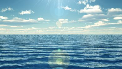 Photo of Now it is possible to see through murky water